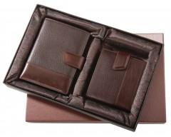 Набор Alvaro: бумажник водителя, портмоне, коричневый